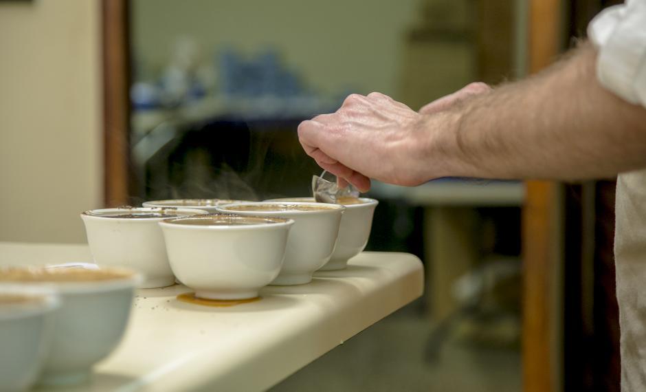 Cinco tazas del mismo café son puestas a prueba para evaluar su consistencia. (Foto: Víctor Xiloj/Soy502)