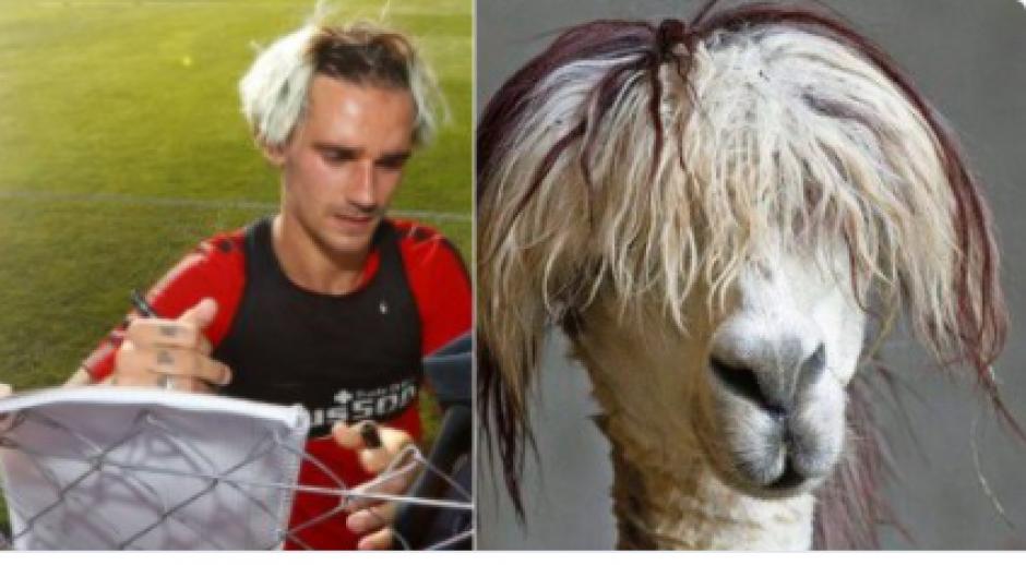 Muy parecidos ¿o no? (Foto: Twitter)