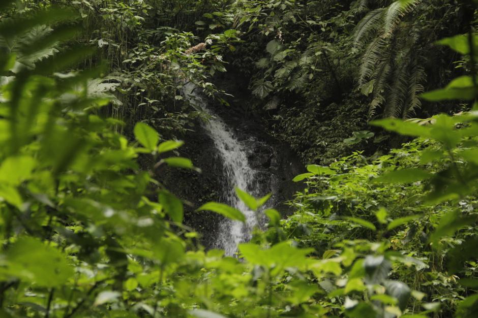 Al llegar a la caída de agua, se respira tranquilidad y se aprecia la naturaleza. (Foto: Fredy Hernández/Soy502)