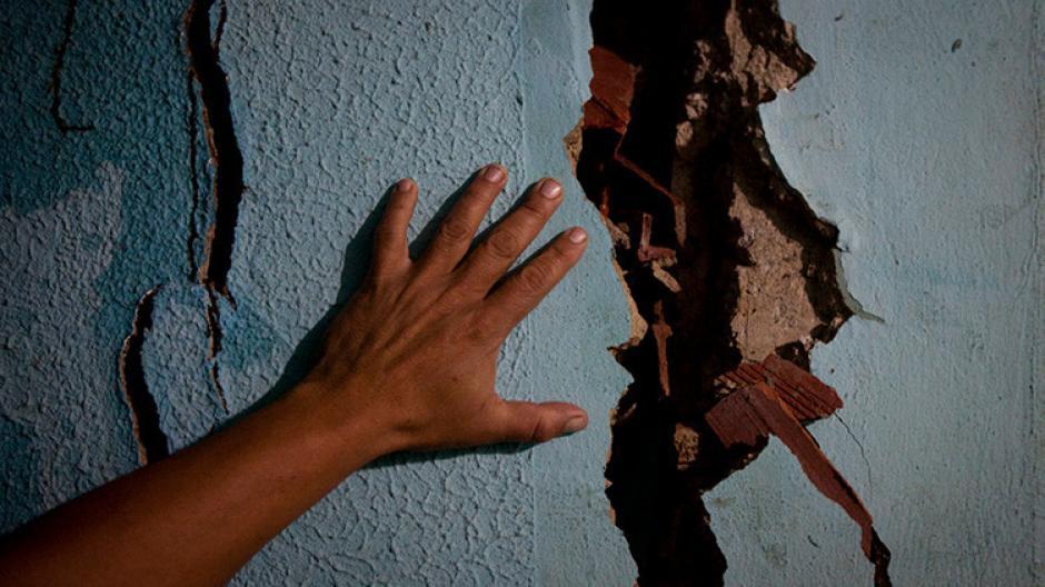 Halla extraña criatura en la pared de su casa