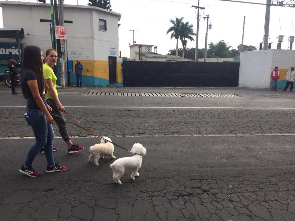 La procesadora de pollo Prisa se ubica en la zona 5 de Villa Nueva. (Foto: Bomberos Municipales Departamentales).