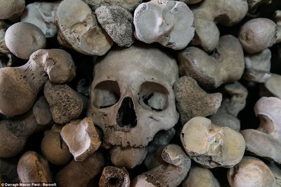 La colección incluye más de mil cráneos. (Foto: Darragh Mason Field)