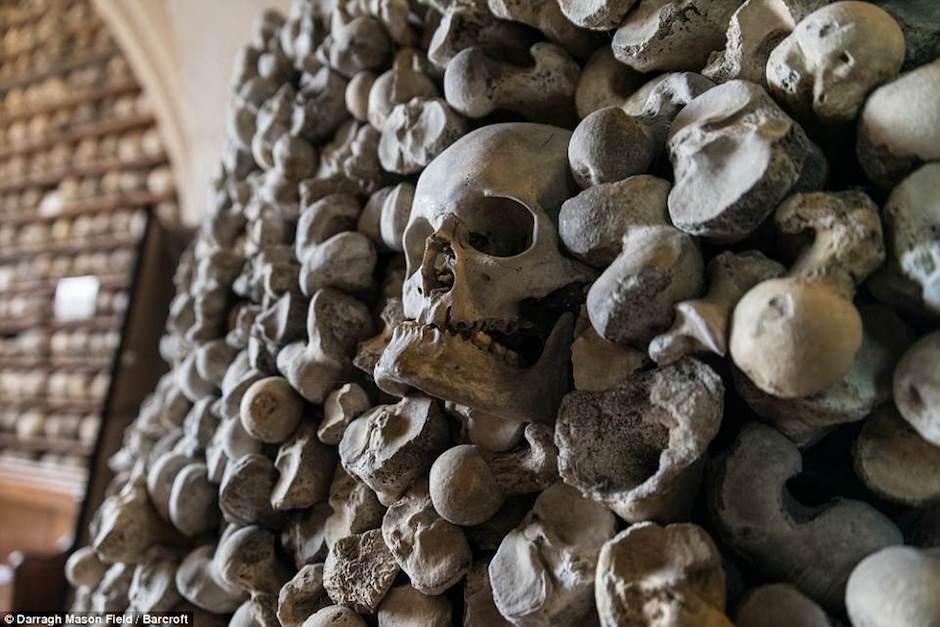 Los esqueletos podrían corresponder a cerca de 2 mil personas. (Foto: Darragh Mason Field)