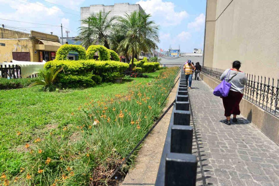 Las jardineras se encuentran fuera del edificio del Ministerio de Finanzas en la zona 1. (Foto: Jesús Alfonso/Soy502)