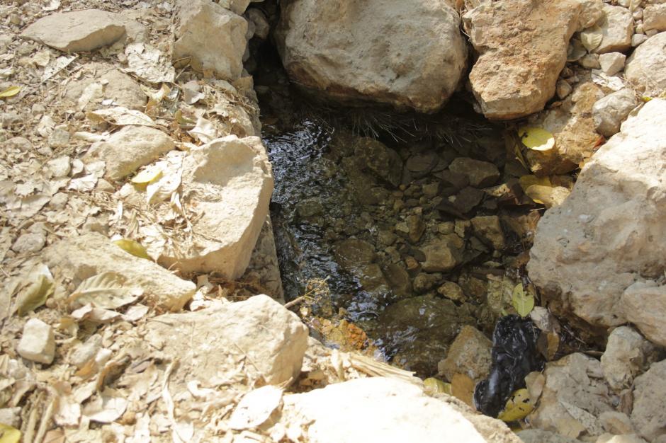 En el camino, puedes encontrar varios nacimientos de agua. (Foto: Fredy Hernández/Soy502)
