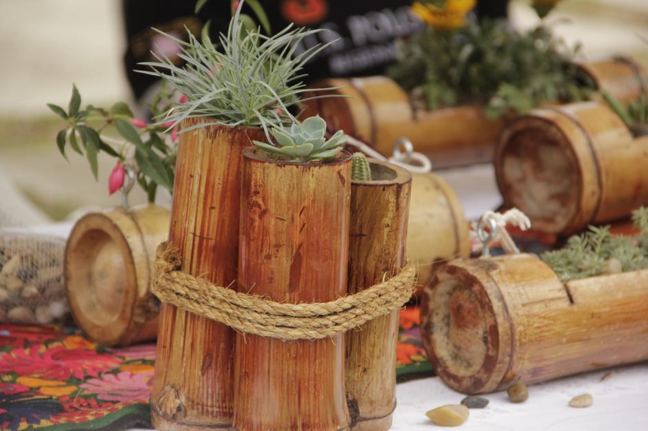 Las Bambucetas pretenden reducir el uso de plástico para las macetas. (Foto: Fredy Hernández/Soy502)