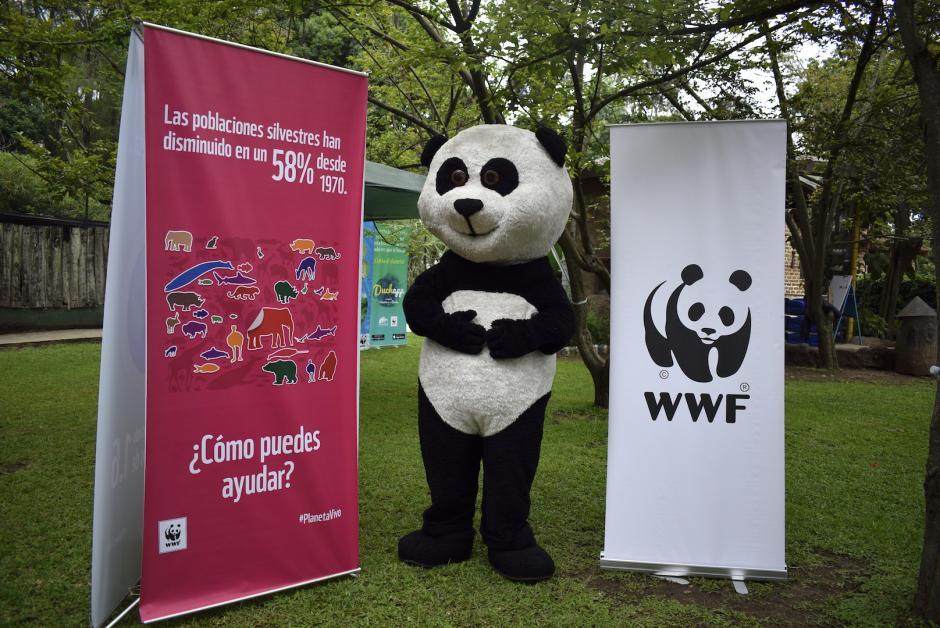 La WWF apoya la actividad explicando detalles sobre la conservación del ambiente. (Foto: Adriana Ligorría/Soy502)