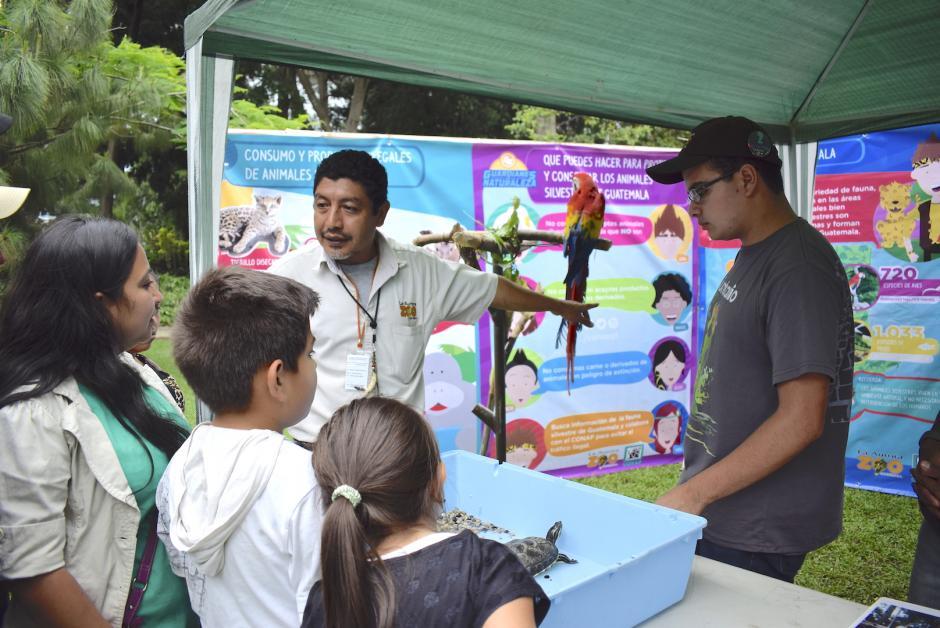 Varios niños aprenden sobre el cuidado del medio ambiente y la diversidad biológica. (Foto: Adriana Ligorría/Soy502)