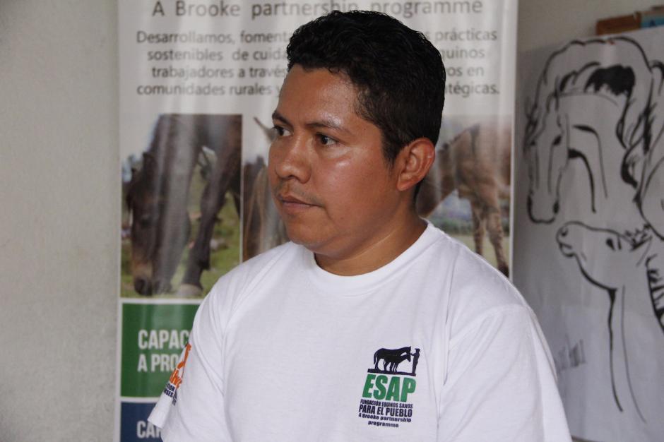 Mario Sapón, de la fundación Equinos Sanos para el Pueblo, apoya en ocasiones a los dueños de los caballos. (Foto: Manuela Trillos/Soy502)
