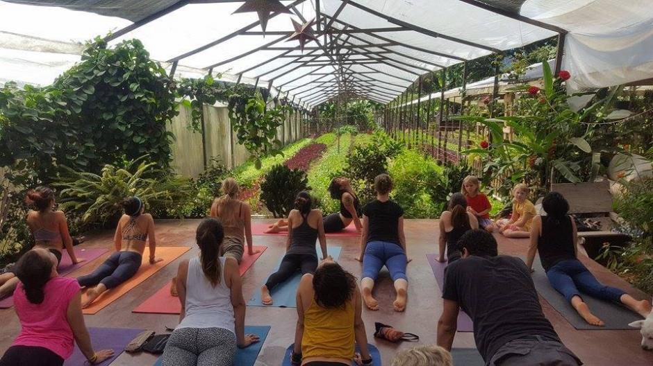 Diversas actividades ayudan a los visitantes a conocetarse con la naturaleza. (Foto: Caoba Farms)