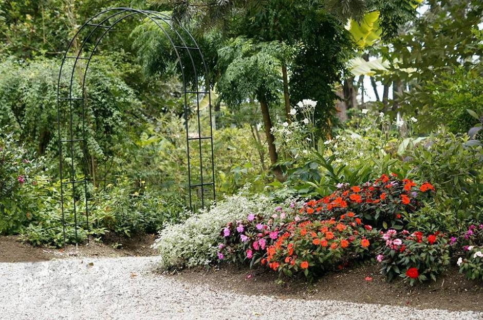 Cuenta con una amplia selección para el jardín. (Foto: Vivero y Café La Escalonia)