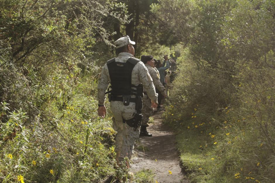 Diprona desplegará diversos operativos para detener a los traficantes de pinabete. (Foto: Fredy Hernández/Soy502)