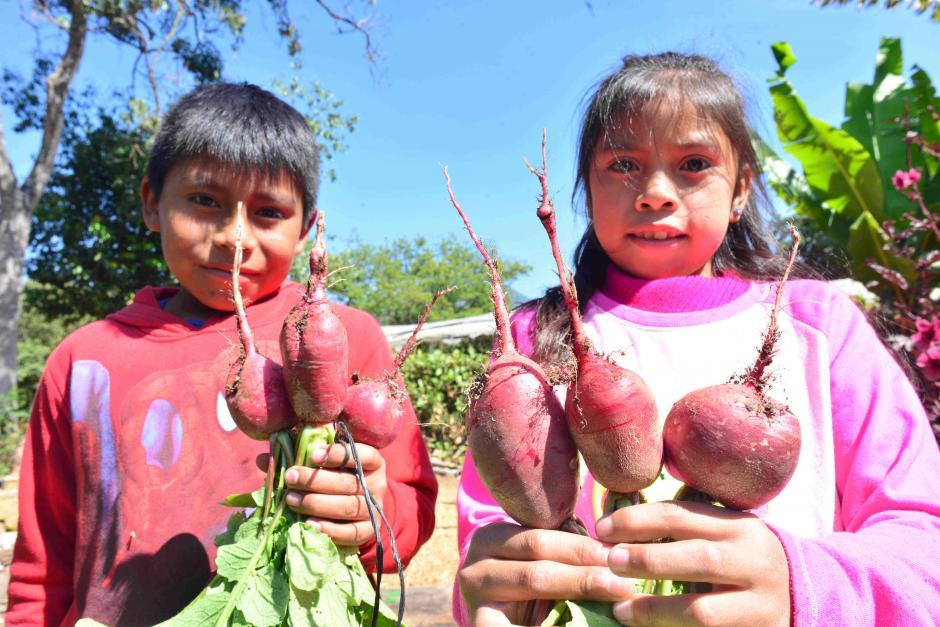 La mayoría asisten a la escuela La Esperanza. (Foto: Jesús Alfonso/Soy502)