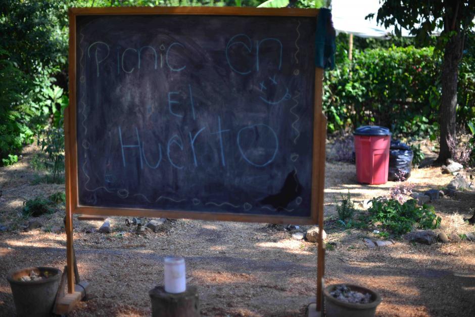 Los niños aprenden a cuidar la naturaleza y cosechar sus propias verduras. (Foto: Jesús Alfonso/Soy502)
