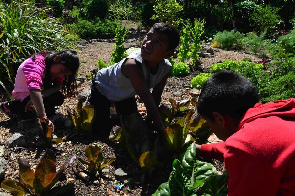 Ambos proyectos brindan educación en chicos de escazos recursos. (Foto: Jesús Alfonso/Soy502)