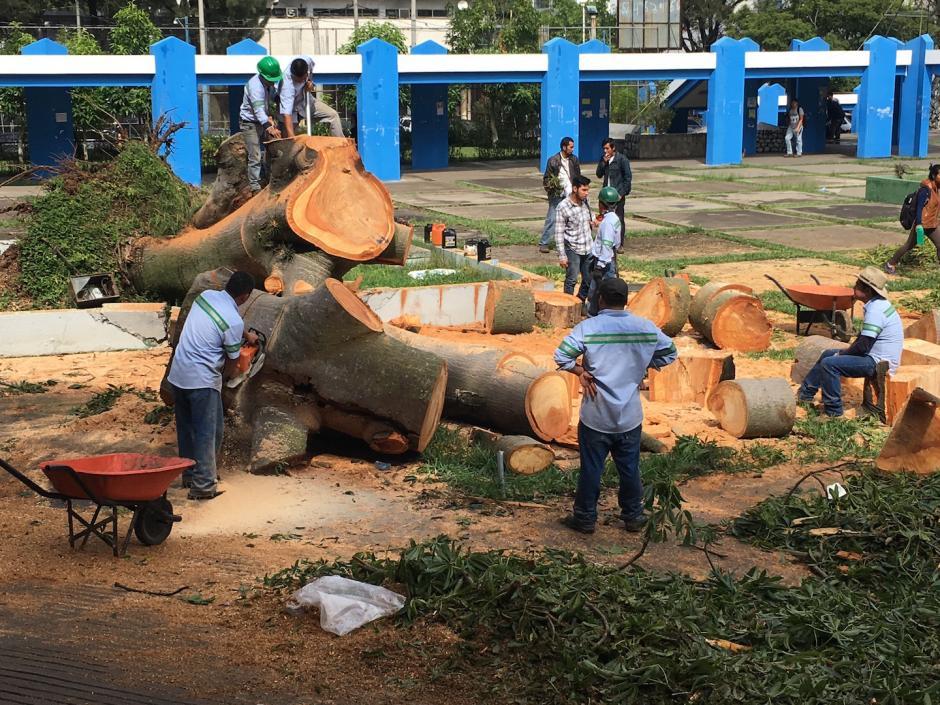 Los trabajadores agilizan la limpieza frente a la entrada de la biblioteca de la Usac. (Foto: Fredy Hernández/Soy502)