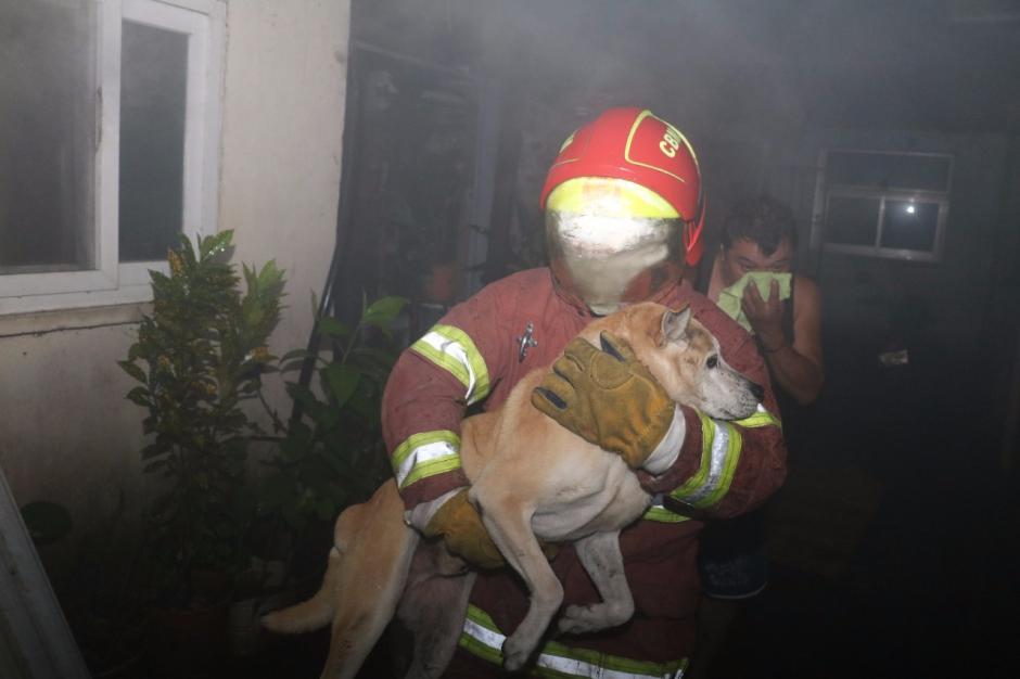 Los bomberos rescataron a la familia y a las mascotas de esta. (Foto: Bomberos Municipales)