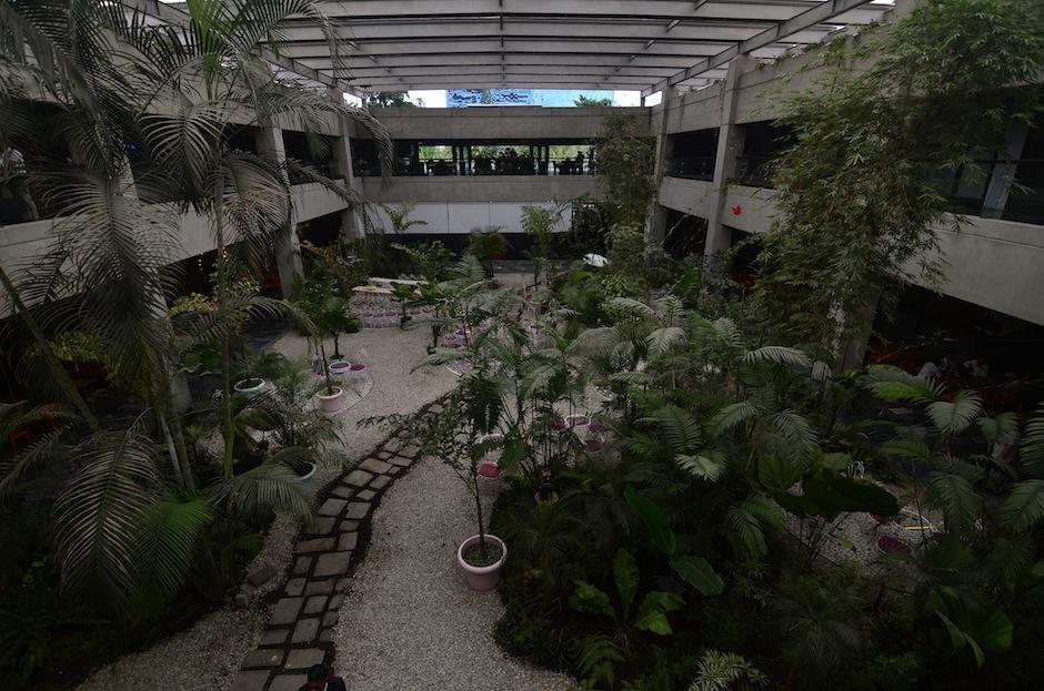 Su jardín es un espacio de relajación. (Foto: Selene Mejía/Soy502)