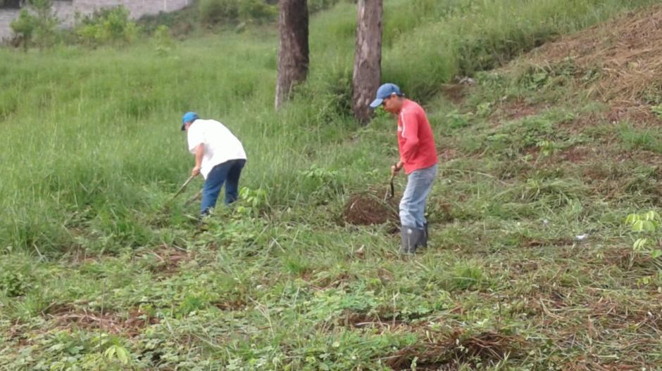 Su condena comprende realizar trabajos de reforestación todos los sábados durante 5 años. (Foto: Municipalidad de Guatemala)