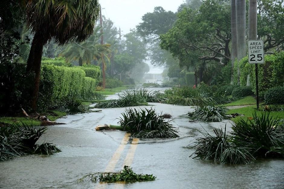 Varios árboles impiden en el paso en una de las calles de Coral Beach, en Florida. (Foto: AFP)