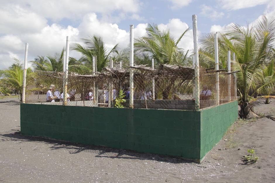 Los pobladores han comprendido la importancia de contar con un tortugario para la conservación de la especie. (Foto: Fredy Hernández/Soy502)