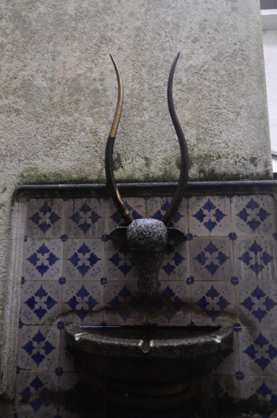En uno de los jardines hay una fuente adornada con una cabeza de un cabro. (Foto: Selene Mejía/Soy502)