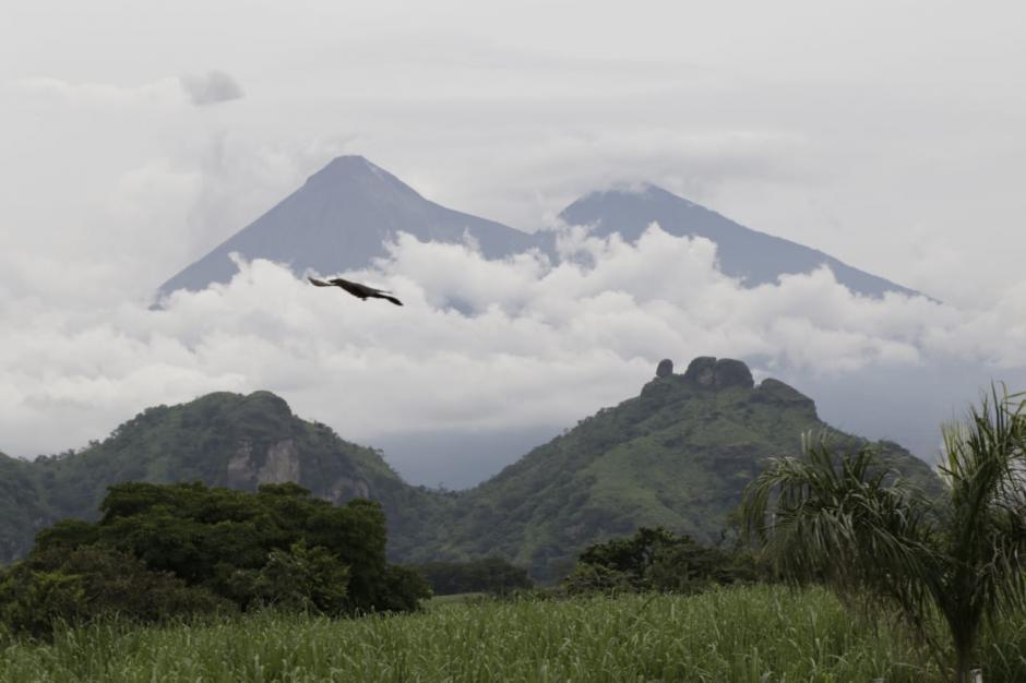 Insivumeh pidió poner atención a tres volcanes. (Foto: Alejandro Balán/Soy502)