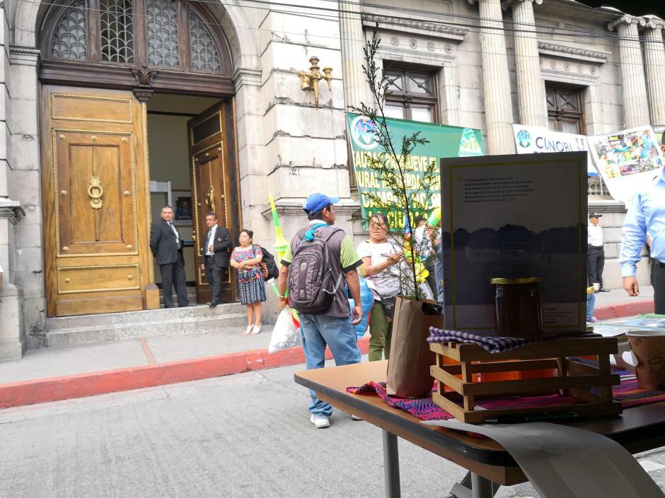 Las protestas continuarán en los próximos días frente al Congreso. (Foto: José Miguel Castañeda/Soy502)