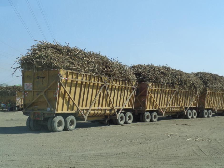 El 9% de las exportaciones del país lo representa el azúcar y sus derivados: (Foto Alberto Consuegra/Soy502)