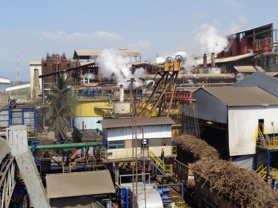 En total, 11 ingenios integran el gremio azucarero. (Foto Alberto Consuegra / Soy502)