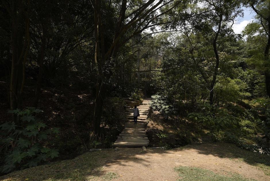Tasmbién cuenta con senderos para recorrer.  (Foto: Wilder López/Soy502)