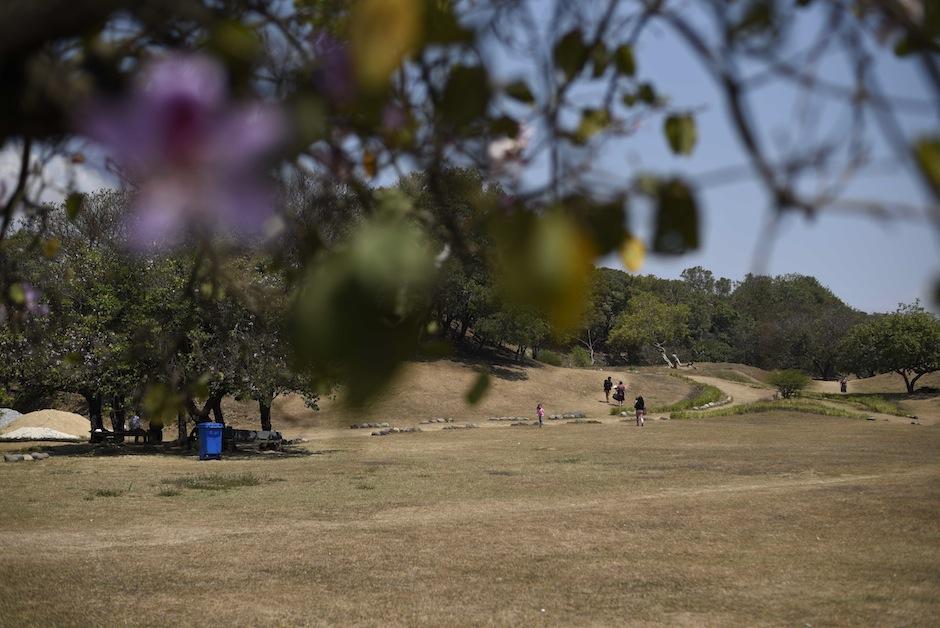 La naturaleza y los montículos hacen que olvides que estás dentro de la ciudad.  (Foto: Wilder López/Soy502)