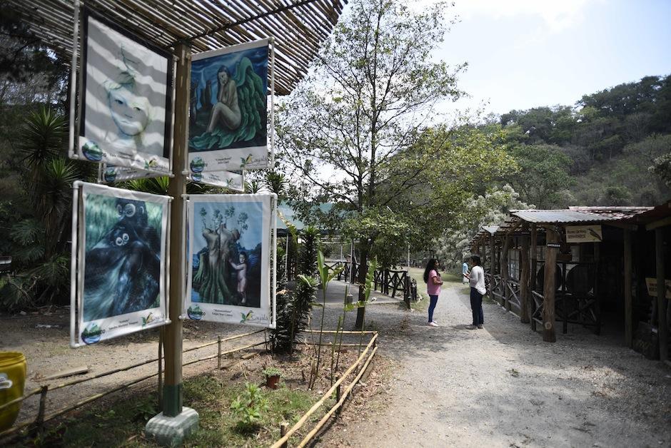 El objetivo es educar y crear conciencia acerca de la protección de la naturaleza. (Foto: Wilder López/Soy502)