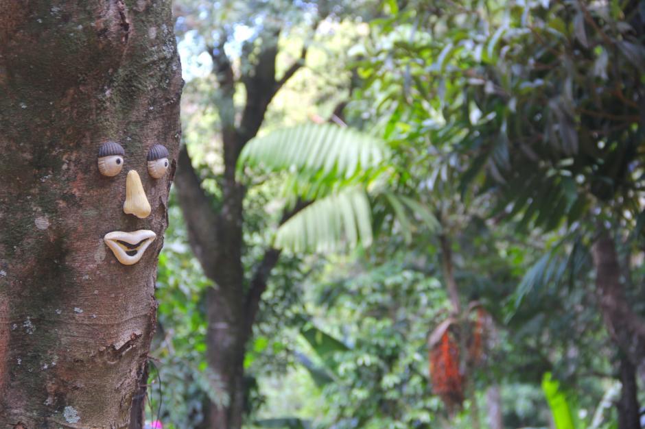 Conectarte con la naturaleza servirá para cargarte de energías. (Foto: Fredy Hernández/Soy502)