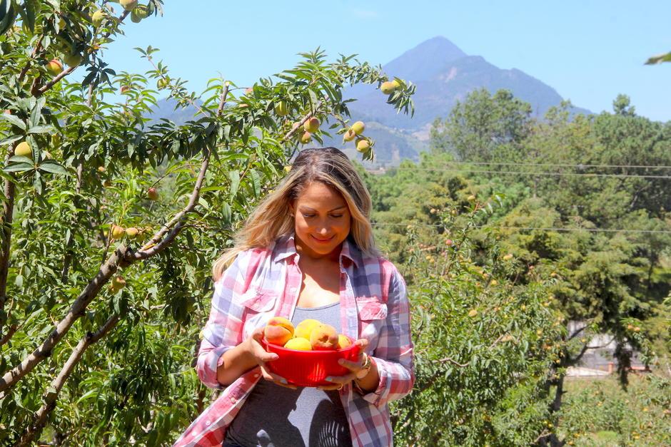 Los huertos te permitirán captar escenas espectaculares entre árboles, frutas y volcanes. (Foto: Fredy Hernández/Soy502)