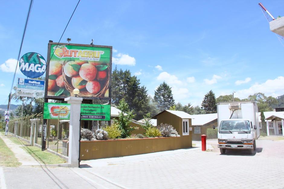 FRUTAGRU es una asociación que promueve un mejor trato para los productores del área. (Foto: Fredy Hernández/Soy502)