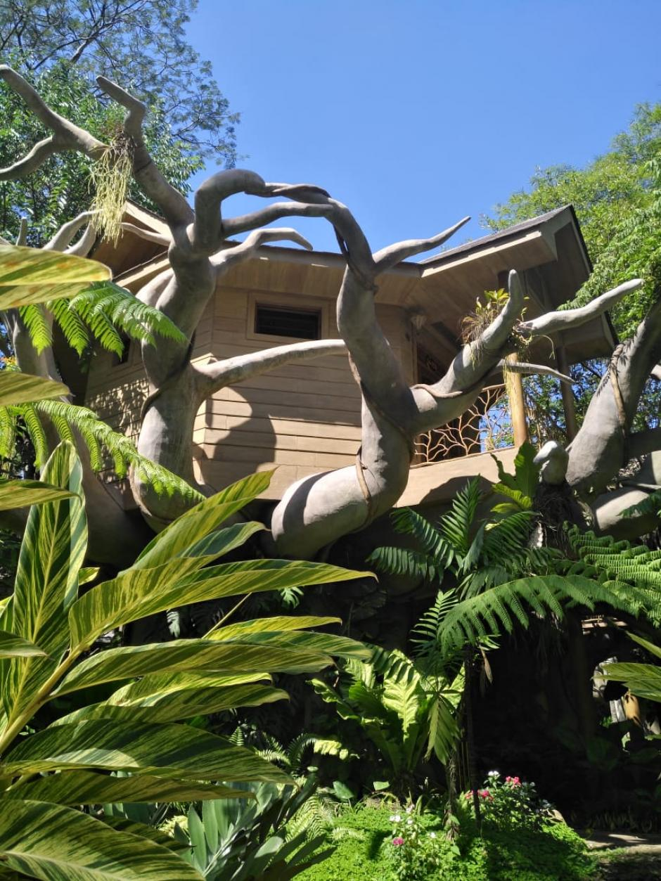 La casita en el árbol es el sueño de niños, jóvenes y adultos. (Foto: Melissa Menéndez/Soy502)