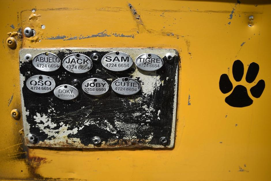 El bus tiene los nombres de toda la manada. (Foto: Wilder López/Soy502)