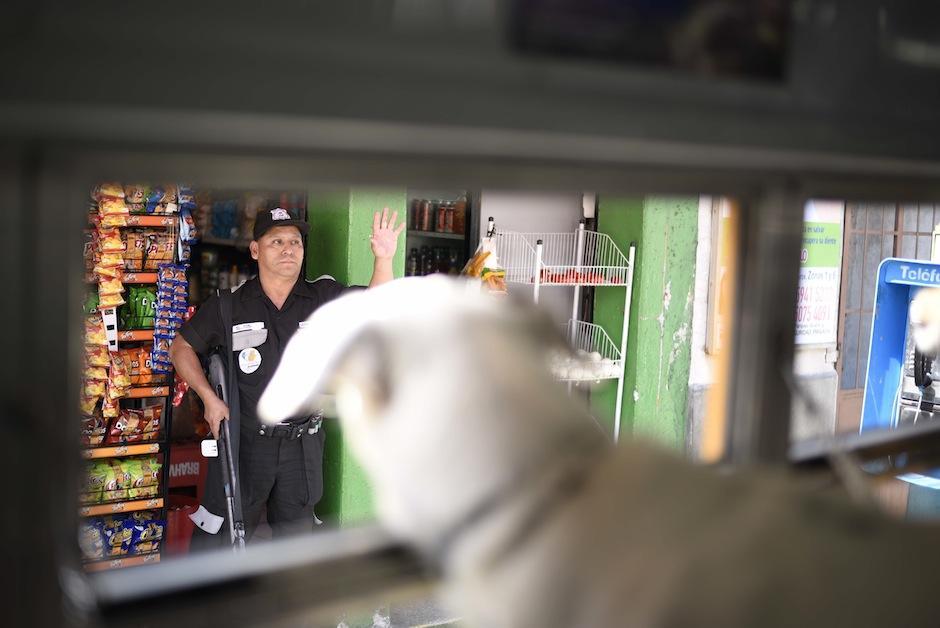 No hay quien se resista a los encantos de los perros. (Foto: Wilder López/Soy502)