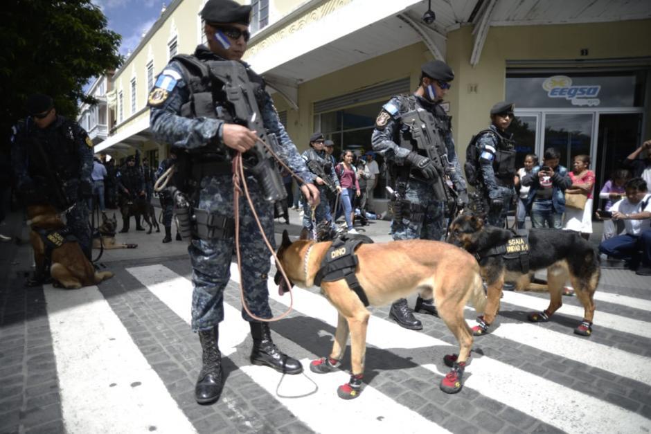 Los agentes caninos también desfilaron durante el aniversario 22 de la PNC. (Foto: Wilder López/Soy502)