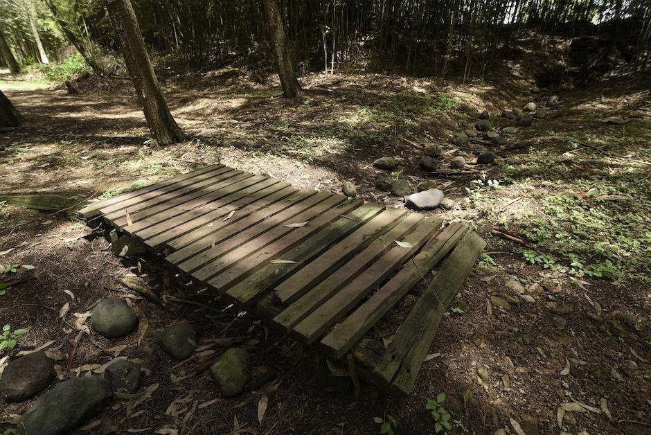 Esta es la primera reserva en un centro educativo asociada a Reservas Naturales Privadas a nivel latinoamericano. (Foto: Wilder López/Soy502)