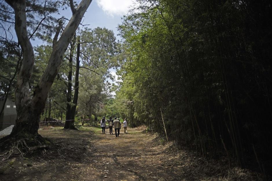 Esta es la Reserva Natural Sisters de Maryknoll. (Foto: Wilder López/Soy502)