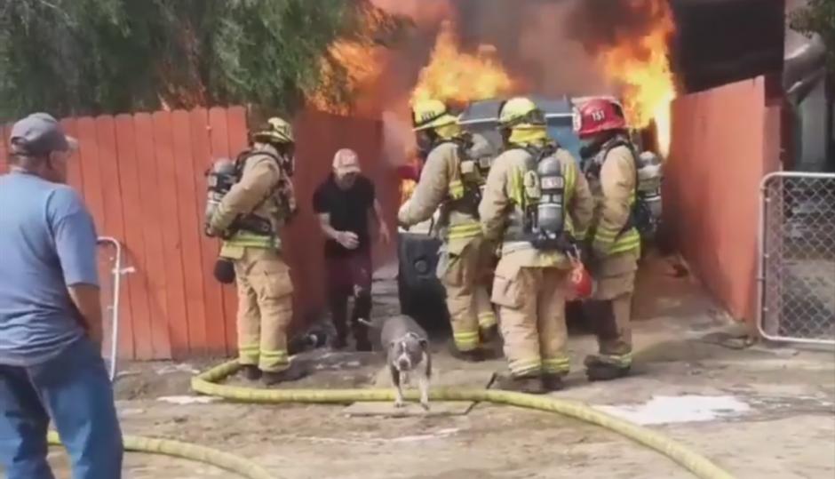 Hombre entra a casa en fuego para rescatar a su perro