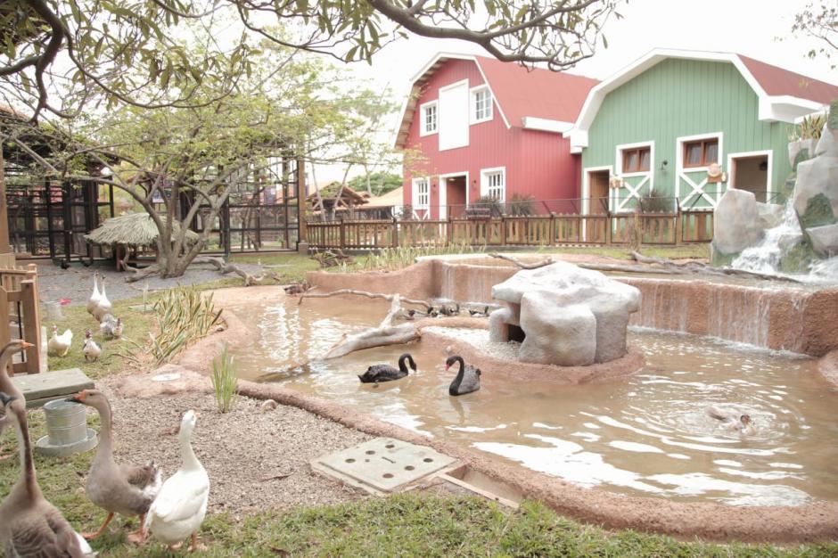 El parque de Aventura Xejuyup junto al Hostal Aldea la Selva es la nueva unidad recreativa del Irtra en Retalhuleu. (Foto: Victor Xiloj/Soy502)