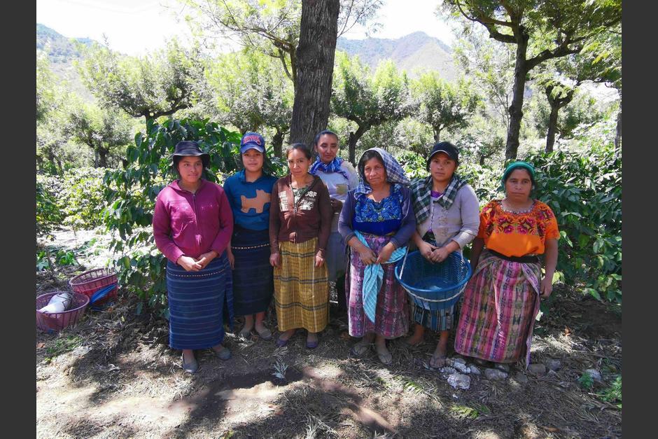 Se dice que las mujeres juegan un papel importante en el proceso de la cosecha, por su fertilidad. (Foto: Fernando Pinetta)