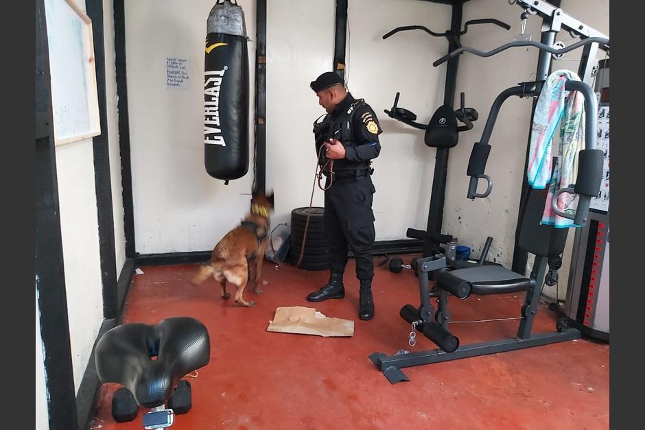 Un gimnasio con máquinas especializadas para hacer ejercicio fue desmantelada en la cárcel de El Boquerón. (Foto: PNC)