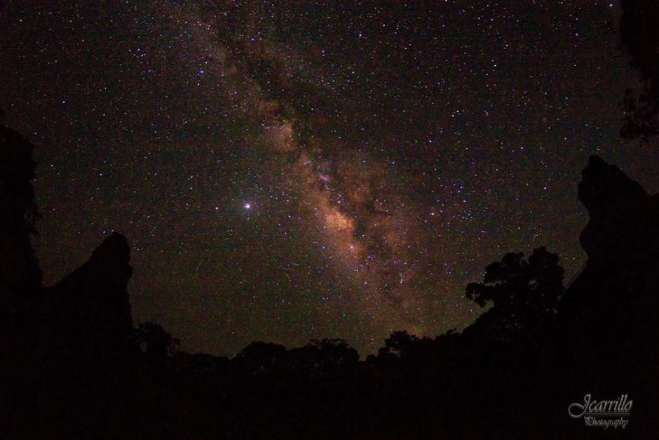 Las impresionantes imágenes que cautivó en Petén. (Foto: Parque Nacional Tikal)