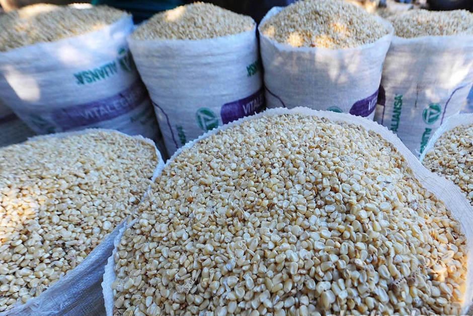 Dos hombres fueron detenidos por especulación de precios del maíz en El Asintal, Retalhuleu. (Foto: Archivo/Soy502)