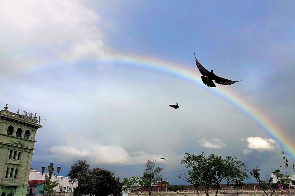 El arcoíris fue captado también en la Plaza de la Constitución (Fotografía: Twitter @aisabelreyes)