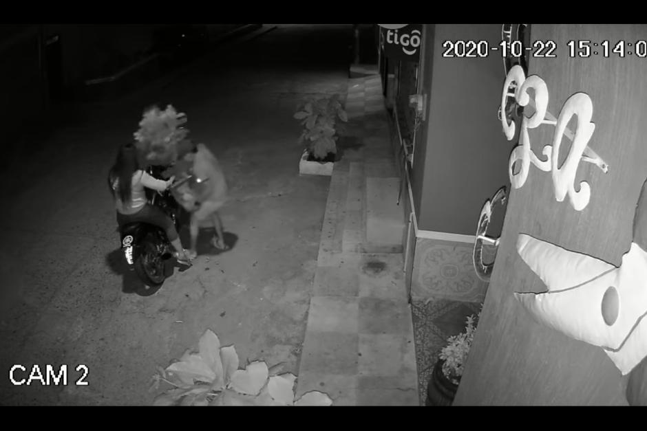 Un motorista que era acompañado por una mujer se robó dos macetas de una casa en la zona 3 de Chiquimula. (Foto: captura de pantalla)